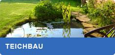 Teich Informationen und Teichbau Tipps – Wie legt man einen Teich an