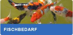 Fischbedarf und Fischfutter für Koi, Stör und andere Teichfische kaufen
